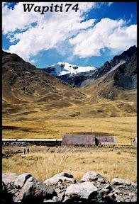 Un mois aux pays des Incas, lamas et condors (Pérou-Bolivie) - Page 2 CD2%2520%252872%2529