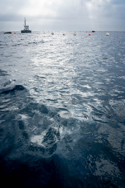 Agua, foto de Carlos Larios