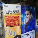PSY is everywhere even promoting D-beer now in Seoul, Seoul Special City, South Korea