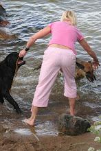 """Foto: Nu ska jag försöka """"kasta ut"""" hundarna i sjön, var f*n tog den andra pinnen vägen???"""