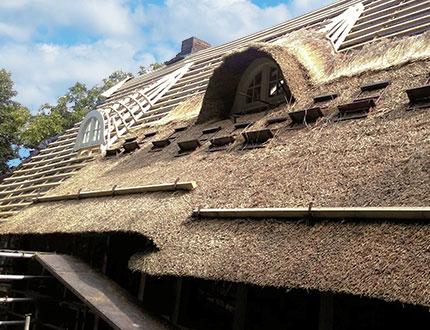 Dach częściowo pokryty trzciną