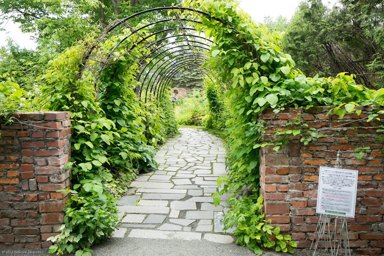 ガーデン入り口のアーチ