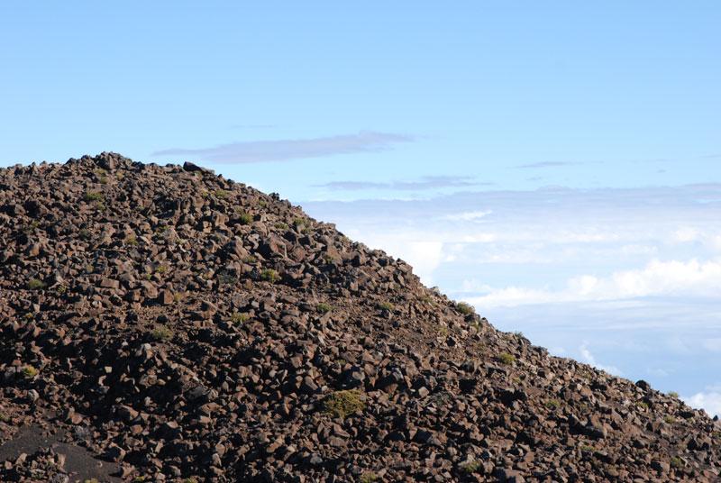 hawaii - 40.jpg