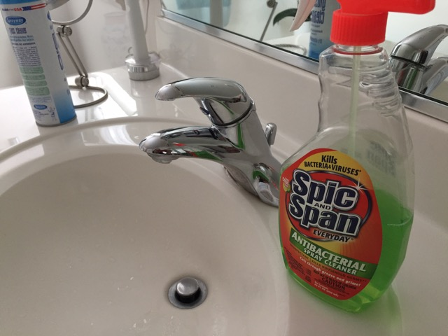 The Thrifty Snob Bathroom Cleaning Made Easy