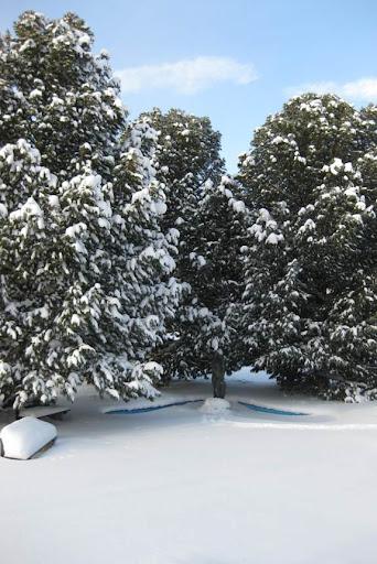 Beeldig die sneeuw