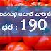 TODAY TOMATO MARKET PRICE    TOMATO MARKET PRICES     tomato market price today//tomato market rate today