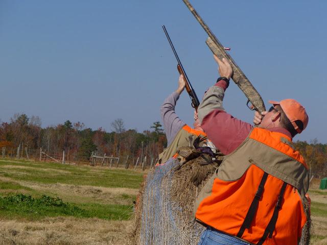 20 Nov 2010 - Mike Kershaw pair shooting shot @ Anderson Creek Hunting.