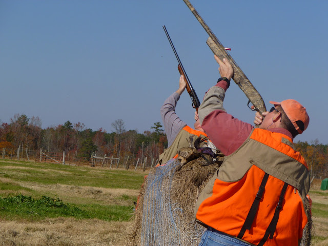 20 Nov 2010 - Mike Kershaw pair shooting shot @ Anderson Creek Hunting.