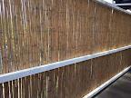 sichtschutz garten bambus (4).JPG