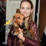 WWW.ENTSIMAGES.COM -    Rosie Fortescue   at       A Date With Your Dog in Honour of Clarissa Baldwin OBE at George Club, London September 9th 2014Celebrities attending The Dog's Trust party in honour of their chief exec Baldwin.                                                 Photo Mobis Photos/OIC 0203 174 1069