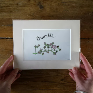 Bramble illustration by Alice Draws The Line