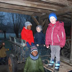 L1C: kinderboerderij