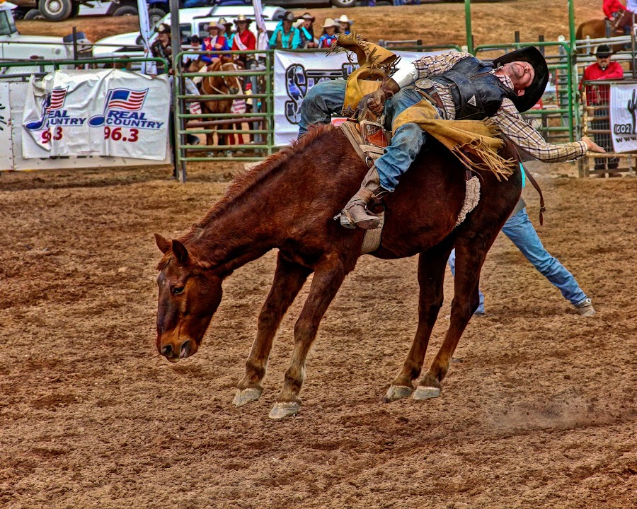 by Jim Moon - Sports & Fitness Rodeo/Bull Riding ( cowboy, whisper river photography, bronc rider )