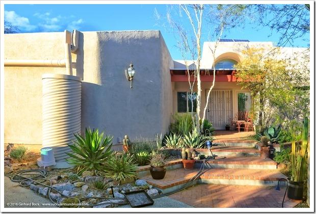 151229_Tucson_GregStarr_0080