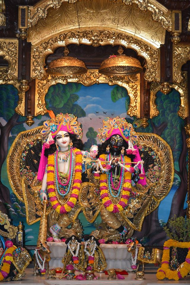 ISKCON Ujjain Deity Darshan 09 April 2016 (7)