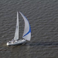 Dauphin Island Race 2013 017