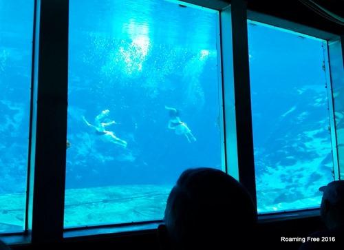 Underwater theatre