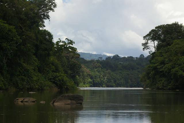 L'Approuague, près de Saut Athanase (Guyane). 21 novembre 2011. Photo : J.-M. Gayman