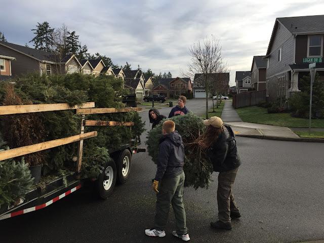 Christmas Tree Pickup - January 2016 - IMG_5730.JPG