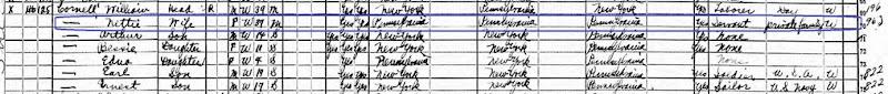 Nettie 1920 census highlighted