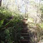 Stairs along the Nature Track (185505)