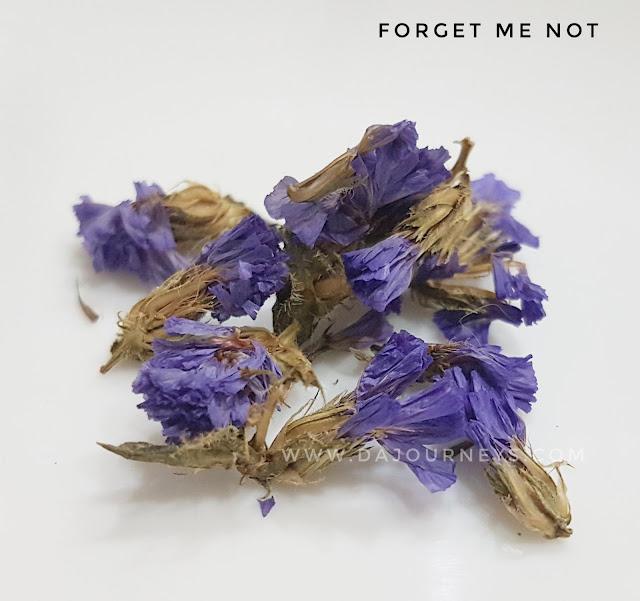 Manfaat dan Khasiat forget me not