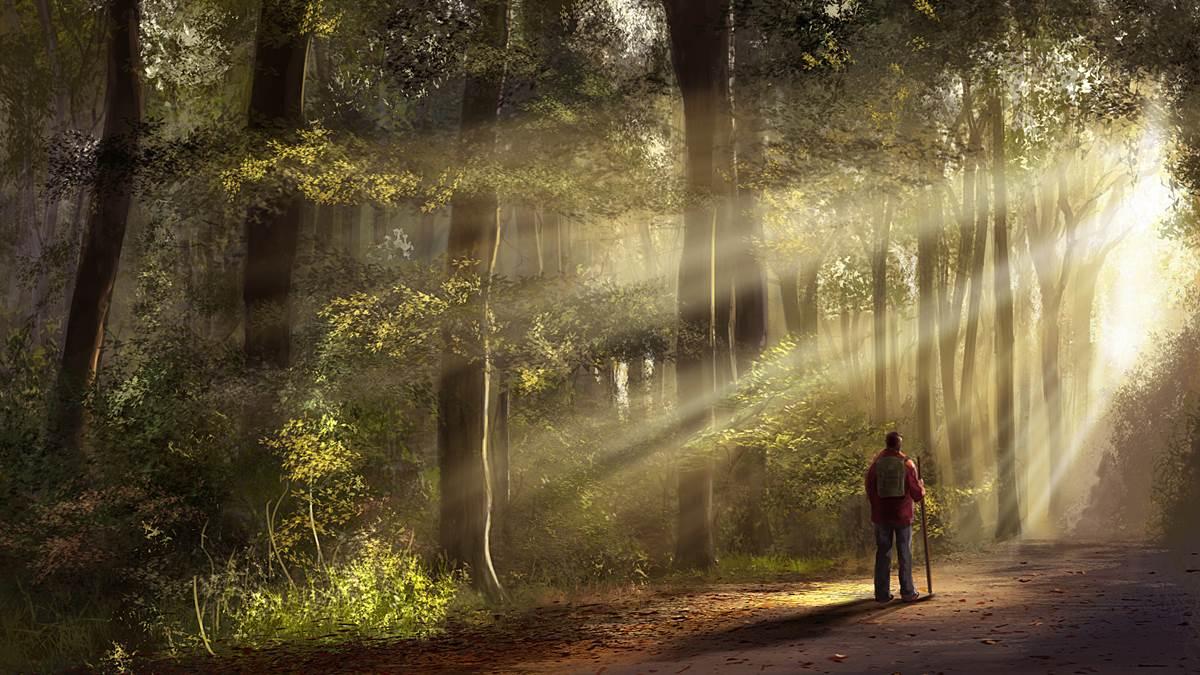 trong rừng cây