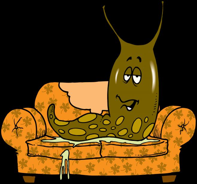 Slug-640x564