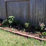 Gardening 2010 - 101_1242.JPG