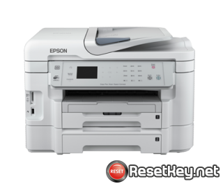 Reset Epson WorkForce WF-3531 printer Waste Ink Pads Counter