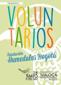 voluntarios_fundacion_humedalesBogota.jpg