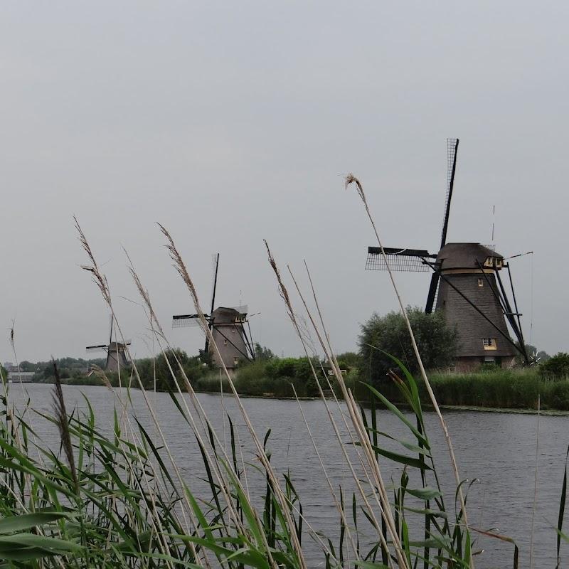 Day_6_Kinderdijk_32.JPG