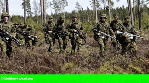 Hình 1: Nga tăng cường hiện diện quân sự tại Crimea, đáp trả lại NATO