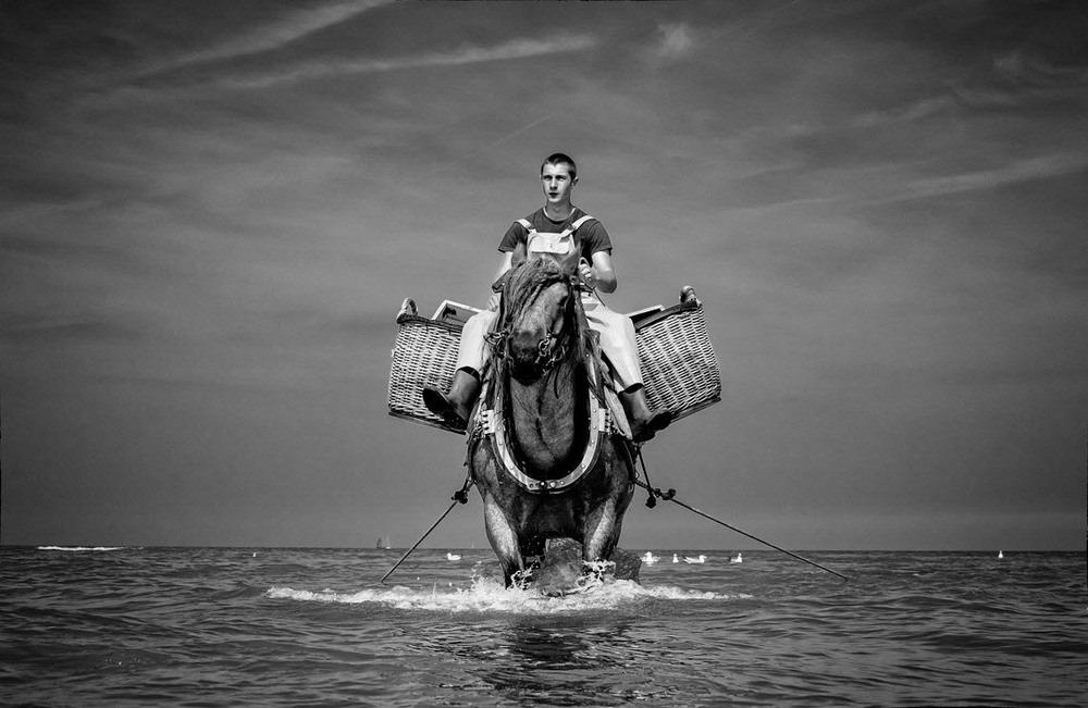 horseback-fishing-oostduinkerke-5