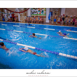 20161217-Little-Swimmers-IV-concurs-0068