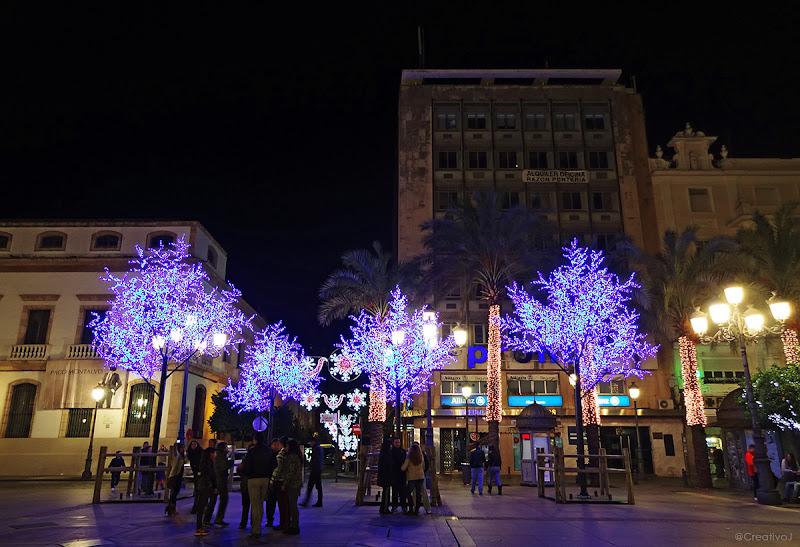 luces navidad, árboles de neón, neón azul, naranjos, plaza tendillas, árboles iluminados, neón, córdoba, españa, navidad, festividad, decoración navideña