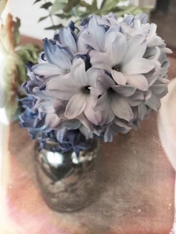 I haven hos evigglade ♥: smukke blå lige nu