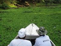 Muyuna Lodge - animal watching expedition