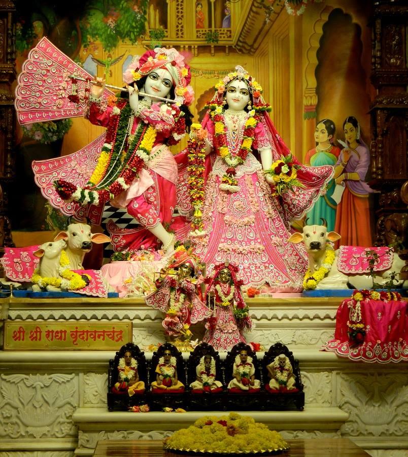 ISKCON Pune NVCC Deity Darshan 08 Jan 2017 (4)