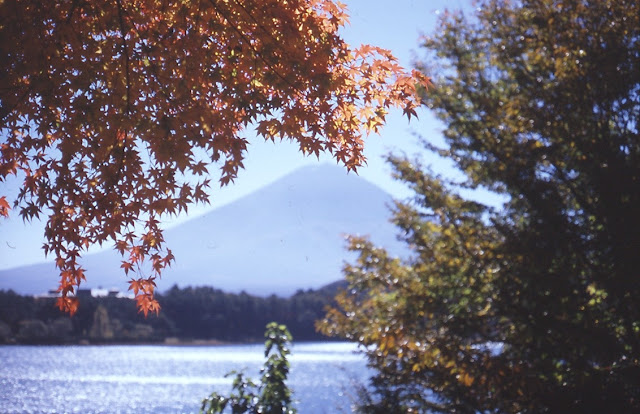 ニコンF2 富士山 河口湖 紅葉
