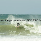 _DSC9566.thumb.jpg