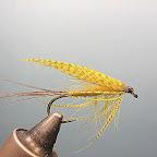 5. Tak przygotowane skrzydełka przywiązuję od góry, starajac się ułożyć je w daszek na grzbiecie muszki.