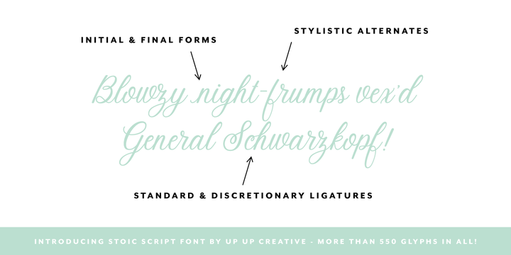 Download Stoic Font Family From Up Up Creative