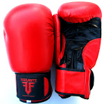 Boxing-Gloves-Red-no-logo.jpg