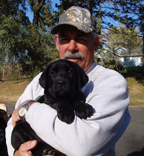 A gorgeous Shiner puppy at 9 weeksOctober 2011