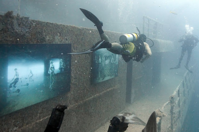 Awesome Underwater Art Gallery By Andreas Franke 1