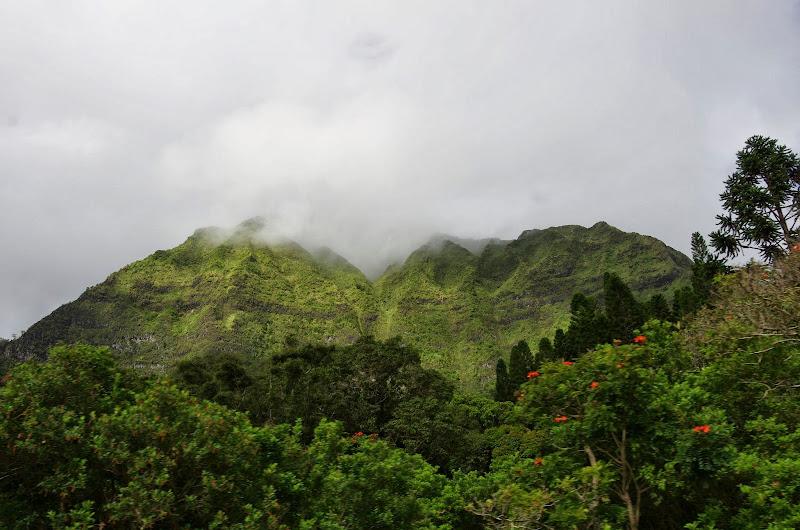 06-18-13 Waikiki, Coconut Island, Kaneohe Bay - IMGP6985.JPG