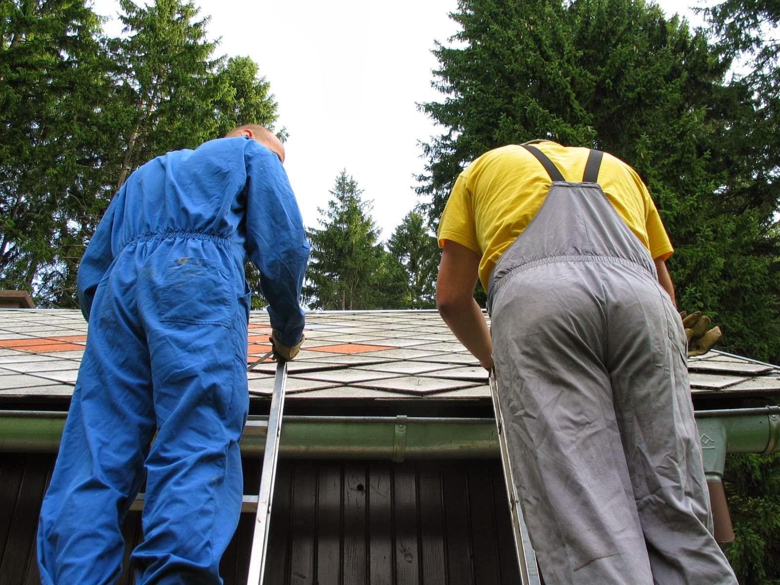 Delovna akcija - Streha, Črni dol 2006 - streha%2B026.jpg