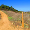 laguna_coast_wilderness_IMG_2261.jpg