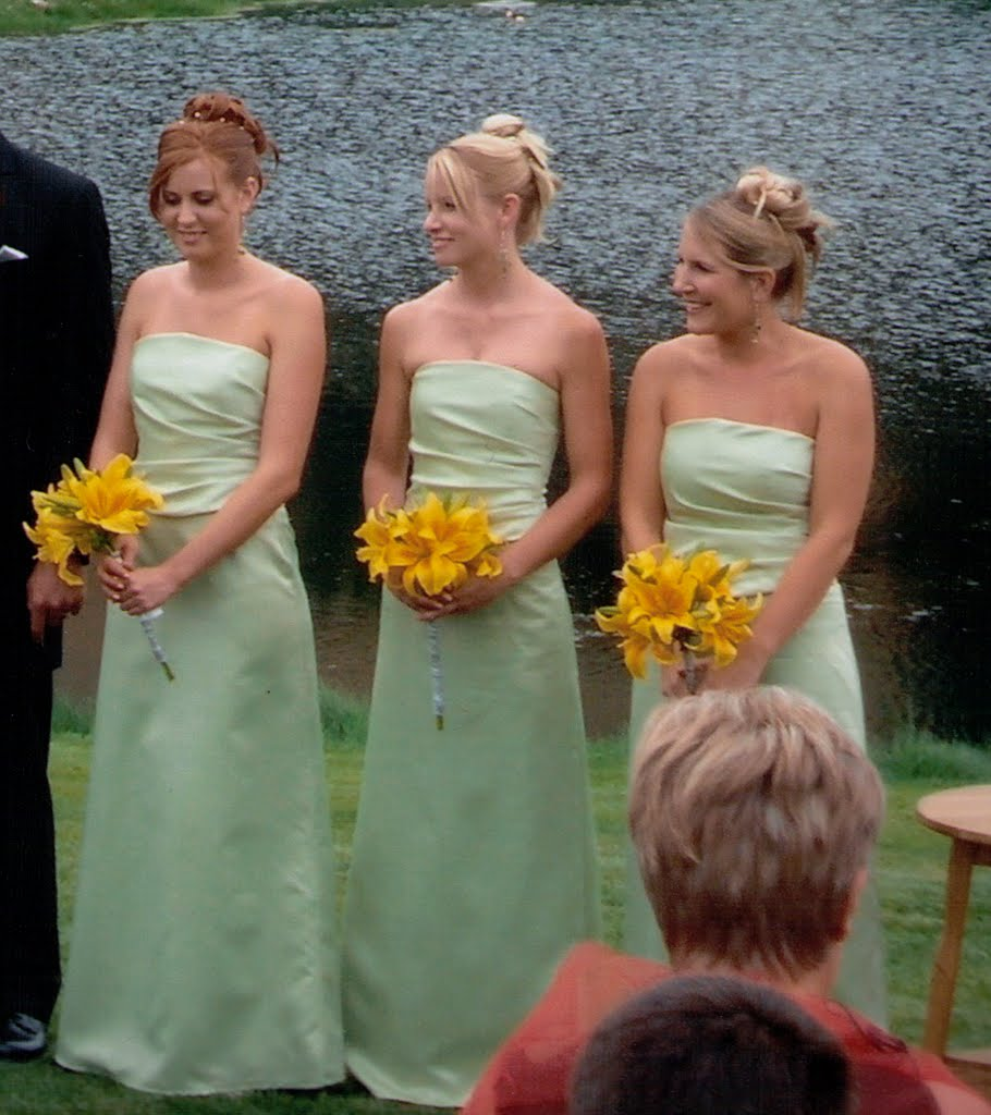Bridesmaid gowns celadon drape front bodice and a line skirt ombrellifo Gallery